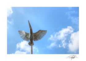 Kingfisher Statue 5 - Litherland - HDR - Framed by Paul-Madden