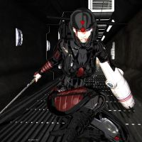 CyberNinja for EvilEloit by LeAKyGrAPHics