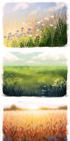summer fields by kafel88