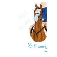 Flossy Cross Country by CrazyBrit88