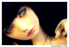 Dollheart meet - Souldoll by animal-nitrate