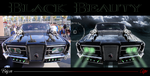 Black Beauty - Before and After by Walking-Tall