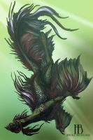 Dorian the sea Dragon by Horace-Bulregard
