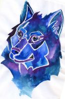 blue wolf by Alexandra-Mad