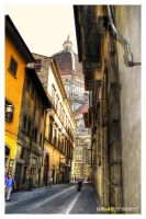 Florence by delucx