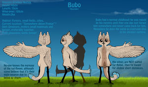 Meet Bubo by HaanPere