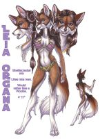 Leia Organa Solo Anthro Reference by wielderofthewind