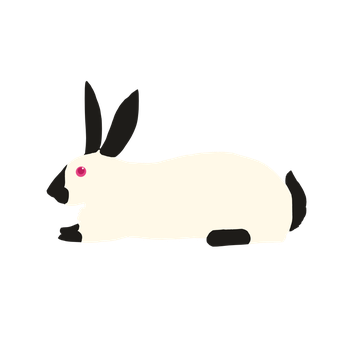 Himalayan Rabbit by dahowlers