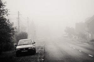 a foggy morning I by torobala