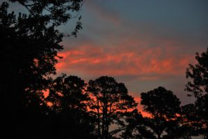 Morning in GA 6-21-12 by Tailgun2009