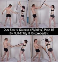 Duo Sword Stances (Fighting) Pack 03 by Null-Entity