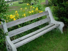 bench-flowers by digital-amphetamine