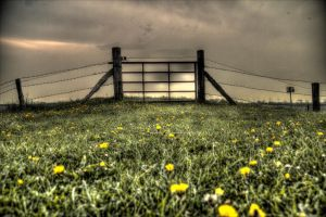 Gate to Emptiness by DisturbedNoise