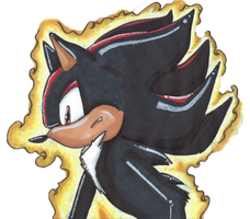 Shadow the Hedgehog by VernFeathers