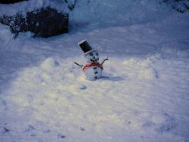 did you spot the snow man, Hogwarts grounds WB, by Sceptre63