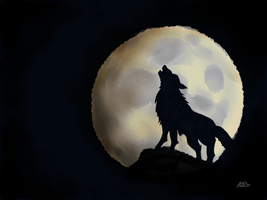 Howl by digitalchet