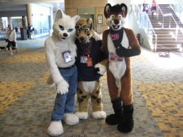 Otakon 2013 - Fursuiter Furries by TujoThePanda