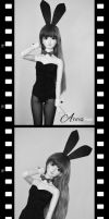 Old Fashioned Bunny Photo Booth by Anna-line