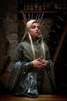 Thranduil cosplay. Dorvinion by the-ALEF