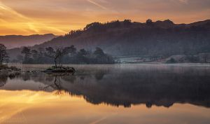 Rydal Loner by PaulBullenLandscapes