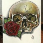 Skull Rose by scoot75