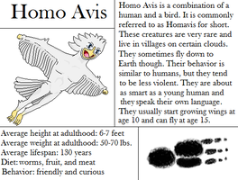 Homo Avis by The-Bryce-Is-Right