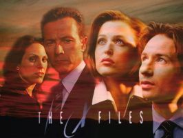 X-Files Wallpaper by gamerchick39