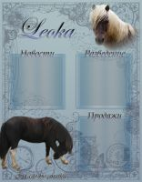 Welsh Ponies Layout by anutka-milashka