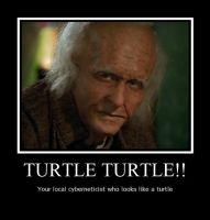 Turtle Turtle!! by LadyData