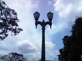 Lamppost by PMinelly