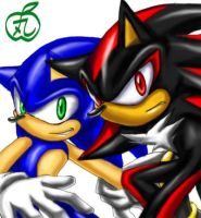 Sonic and Shadow by maruringo