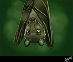 Flying Fox by Ethereal-Suicide