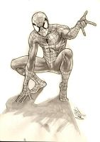 spider man- water and ink by andrecoelhoart