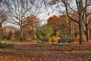 Two Benches by dardaniM