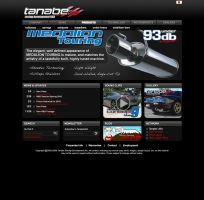 Tanabe USA Website by dkim1985