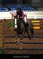 Chestnut Jump (6) by aipstock