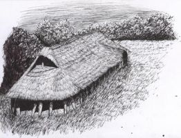 Viking Long House by subedei