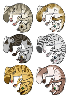 Cat Adoptables 1- Open by Bayflight