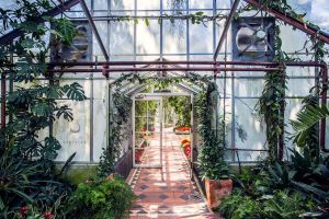 Greenhouse by light-recycled