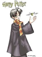 Harry Potter by Shingo-yabuki