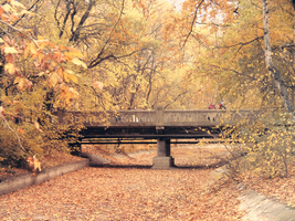 Bridge in Autumn by reaperfoxgirl