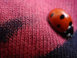red with dots by VineriSeara
