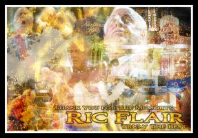 Thank You Ric Flair by EchidnaJC