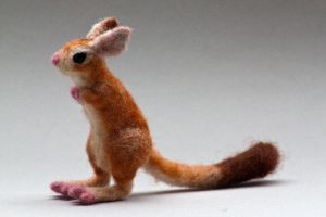 Needle felted springhare by creturfetur