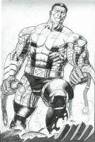 COLOSSUS by thepunisherone