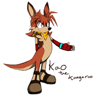 New Sonic Character - Kao The Kangaroo by SiscoCentral1915