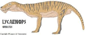 lycaenops_ornatus_by_tomozaurus-d371pv1.jpg