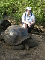 Me with Galapagos Tortoise by Simbas-pal