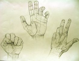 Cross Contour Hand Study 1 by nosurprises