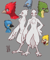 Anthro Bird Sketches by Packmind